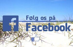 FB-Foelg300x194